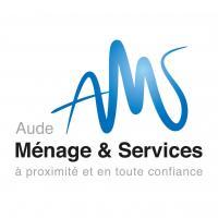 Logo ams 2015